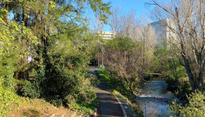 Redefining the role of the Guadalupe River Park in San Jose